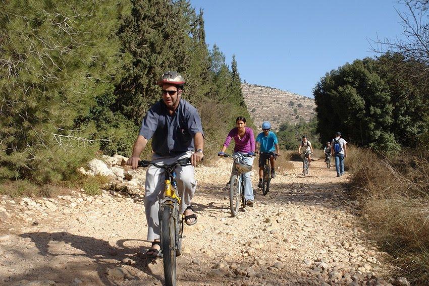 טיול אופניים ביער להב