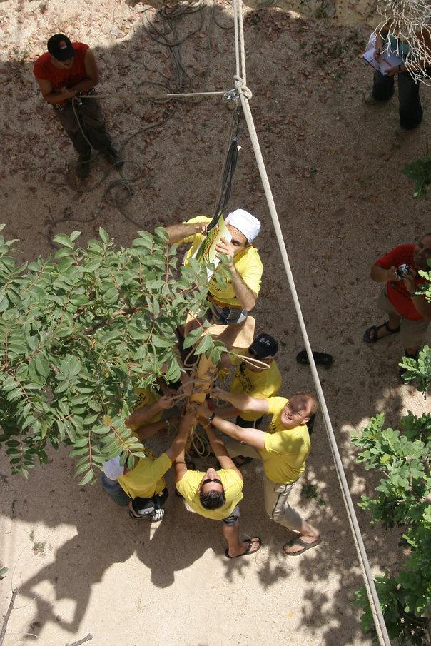 פעילות לגיבוש צוות ירוק בטבע