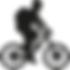 טיולי אופניים צל הדרך.png