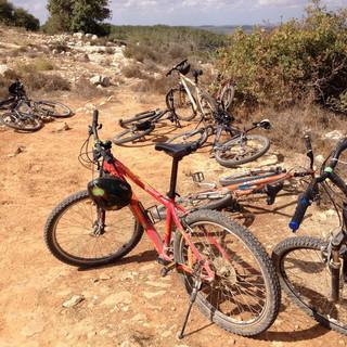 טיול אופניים מאורגן בבארי