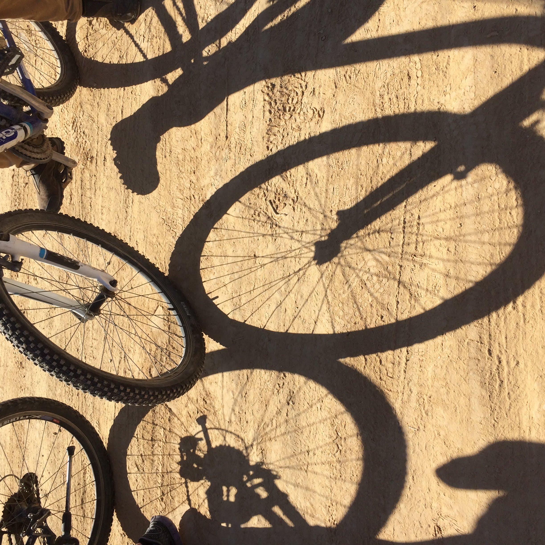 טיולי אופניים בדרום