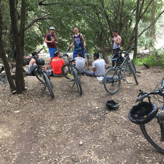 טיול אופניים מאורגן ביער להב