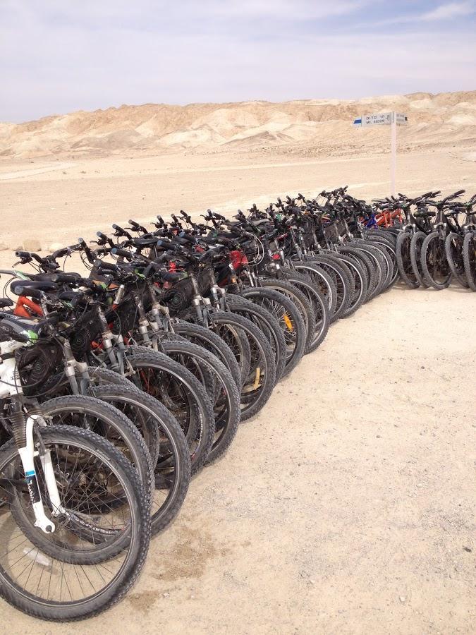 טיול אופניים במלונות ים המלח