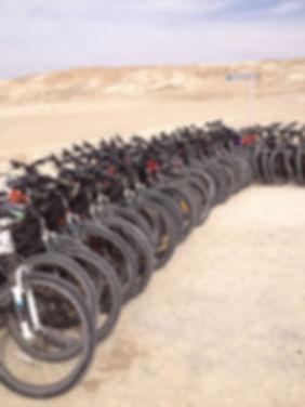 טיולי אופניים לקבוצות,השכרת אופניים לקבוצות,צל הדרך