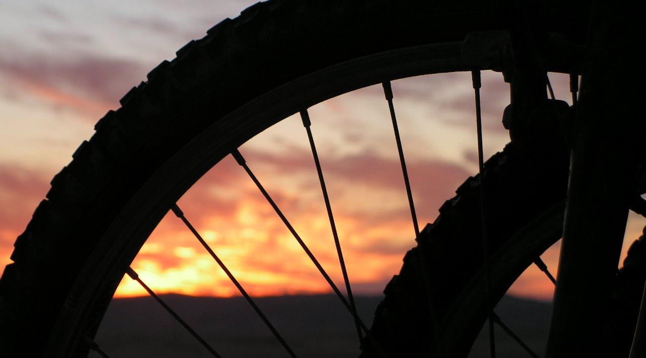 טיולי אופניים לימי כיף