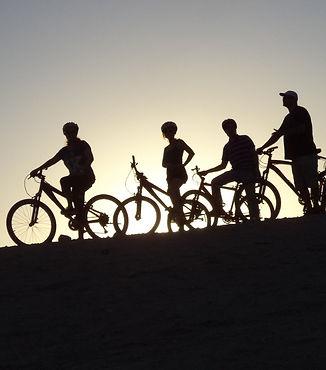 טיולי אופניים מאורגניים