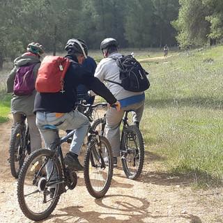 שילוב אופניים ביום גיבוש
