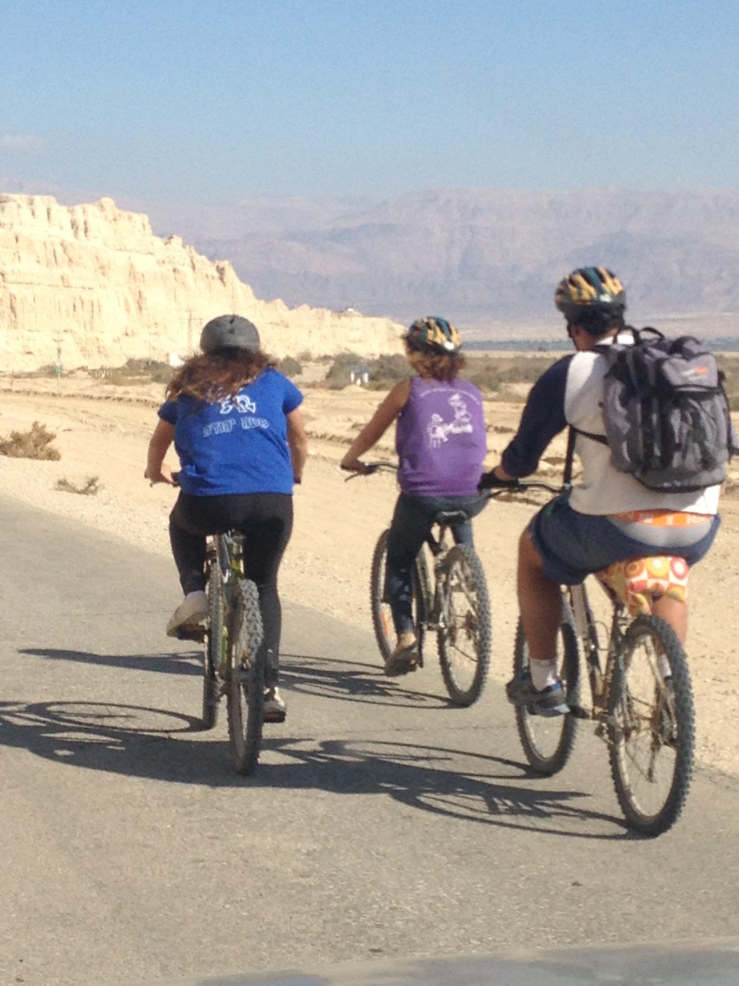 טיול אופניים מאורגן בערבה