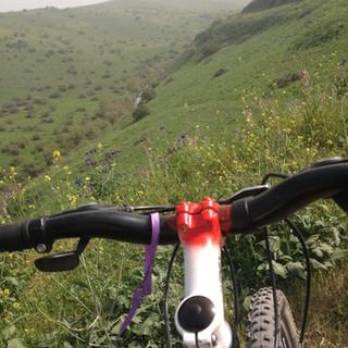 טיול אופניים מאורגן בירדן ההררי