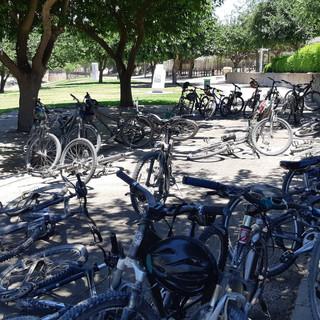 טיול אופניים מאורגן בפארק לכיש