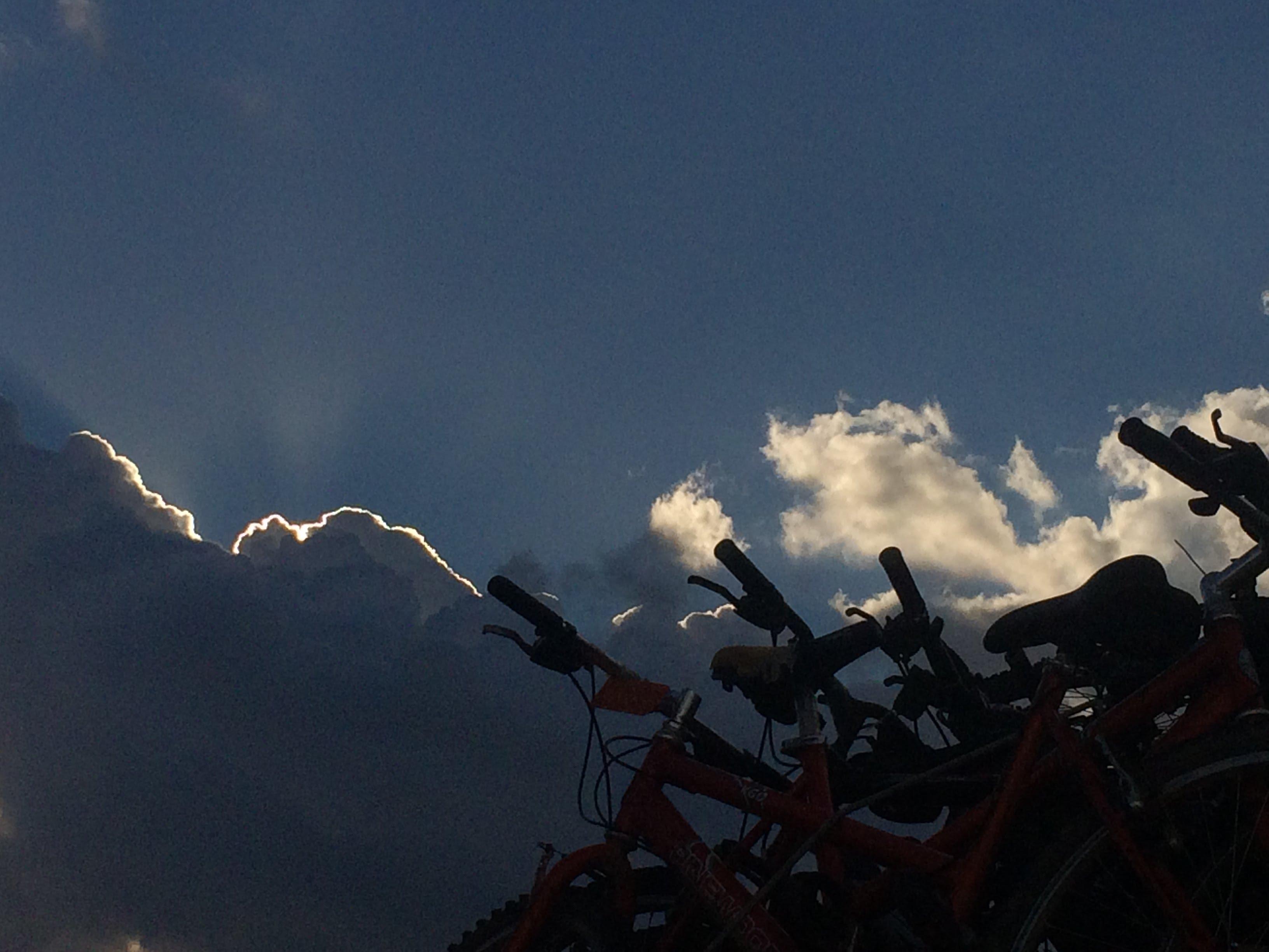 """טיול אופניים מאורגן בנמל ת""""א"""