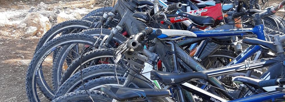 טיולי אופניים השכרה