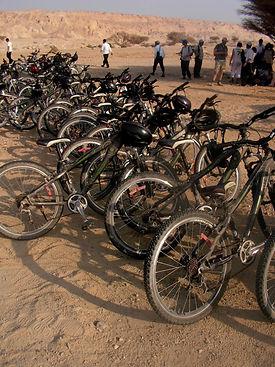 טיול אופניים מאורגן בחצרים.jpg