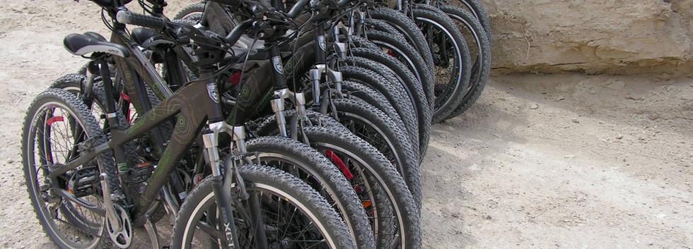 טיולי אופניים בנגב