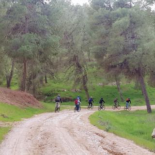 טיולי אופניים בשפלת יהודה