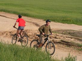 טיול אופניים מאורגן ביער חרובית.jpg