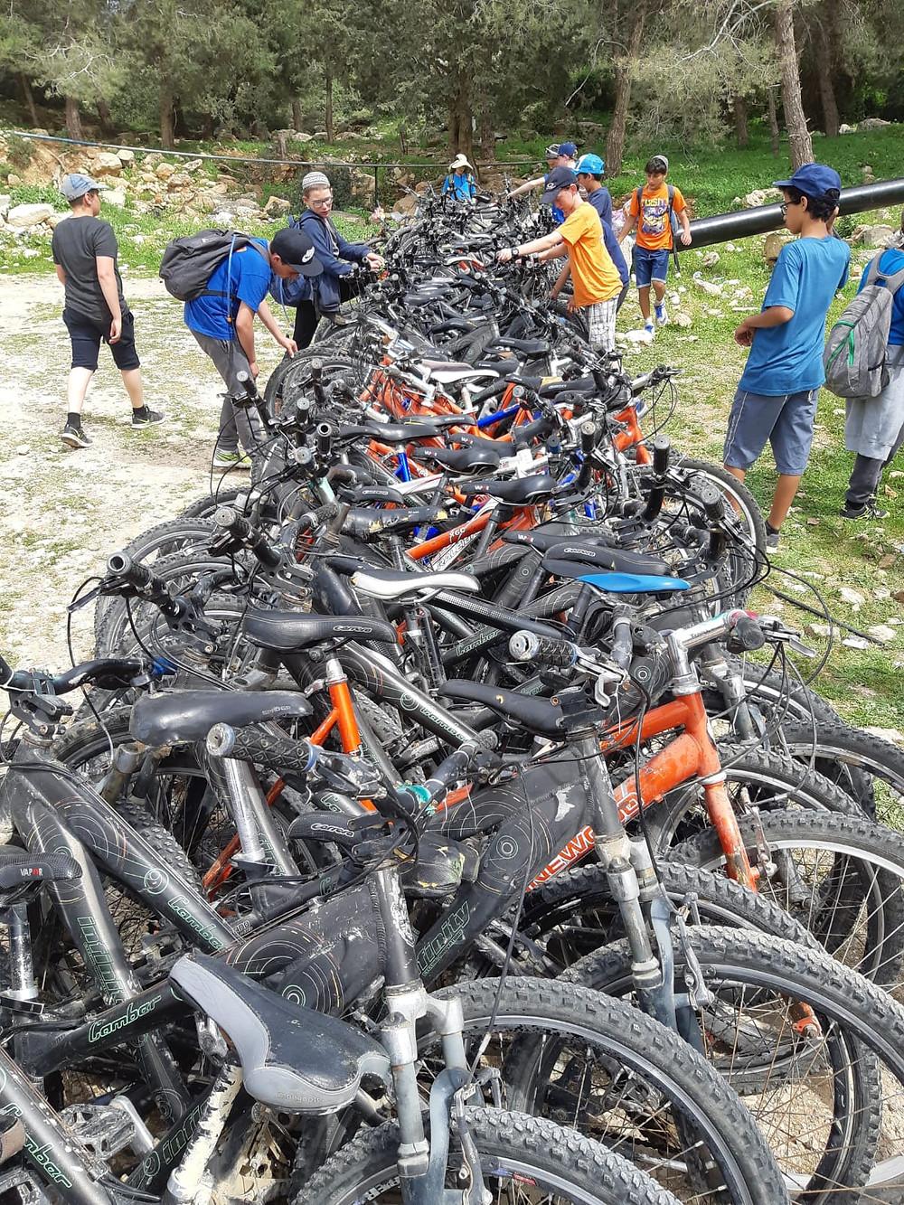 אופניים לקבוצות רוכבים