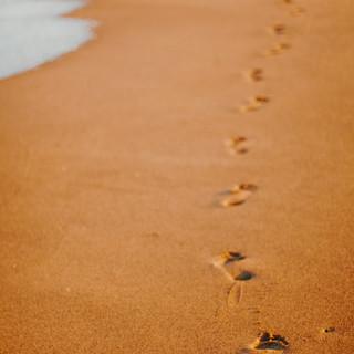 סימנים נשארו בחול