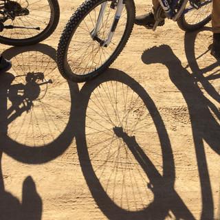 טיול אופניים מאורגן במכתש רמון