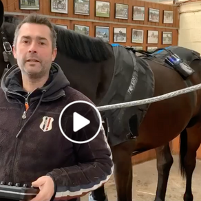 Longines Champion David Coursier about Equery...