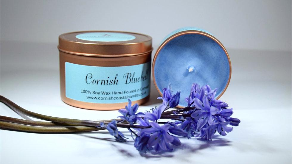 Cornish Bluebell
