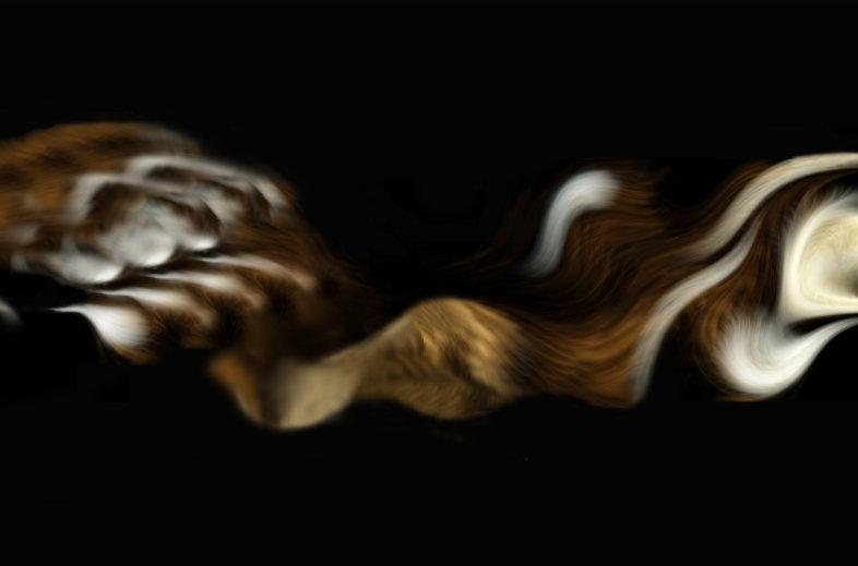 Image chevelure.jpg