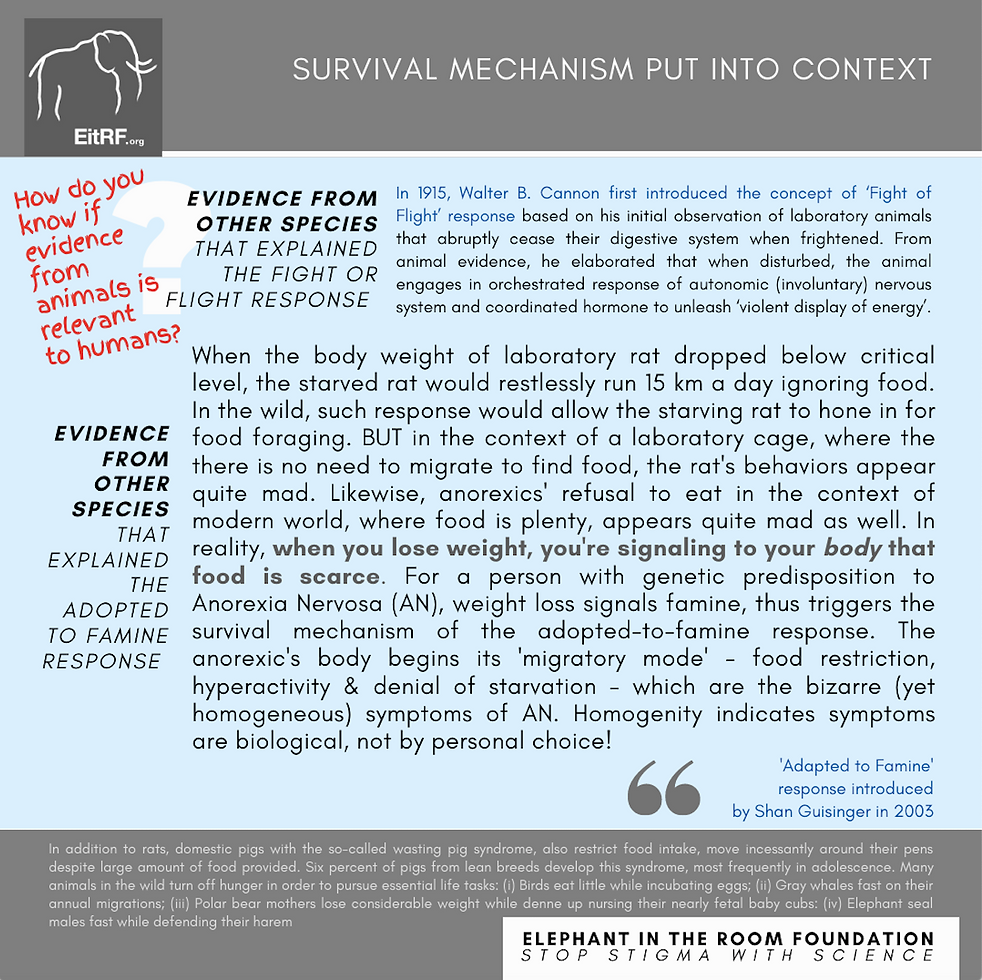 Text explaining Walter B. Cannon's experiments on rats and how humans with anorexia behave similarly.