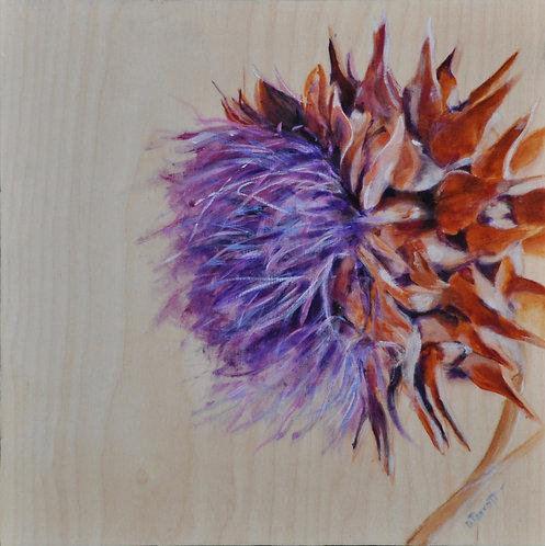Artichoke in Bloom - Debbie Parrott