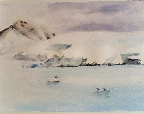 Antarctic #6 - Diana Li