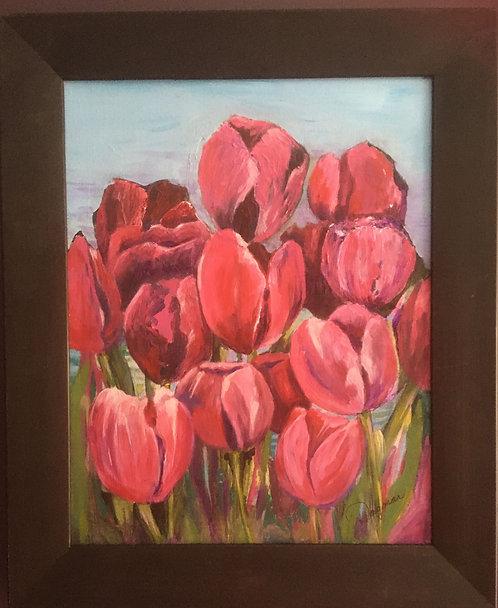 Pink Tulips - Dagmar Klopf