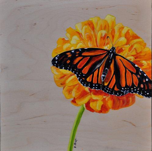 Monarch- Debbie Parrott