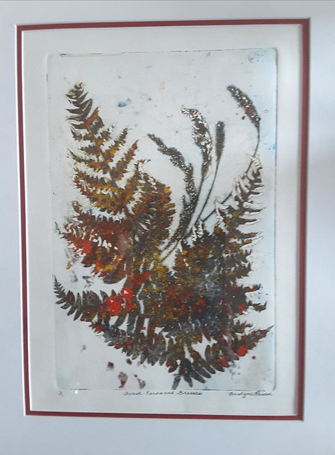 Forest Ferns and Grasses - Carolyne Pascoe