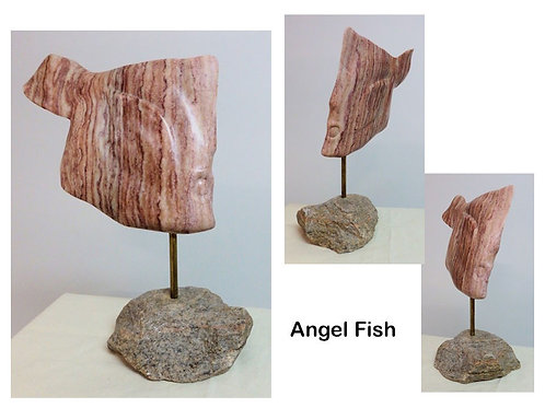 Angel Fish - Andrew Lamb