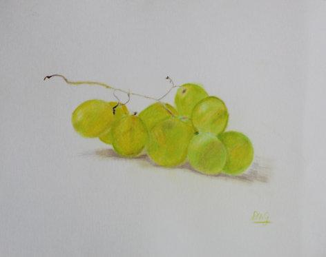 Grape Cluster - Denise Gracias