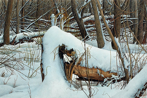Stumped II - Robert Hinves