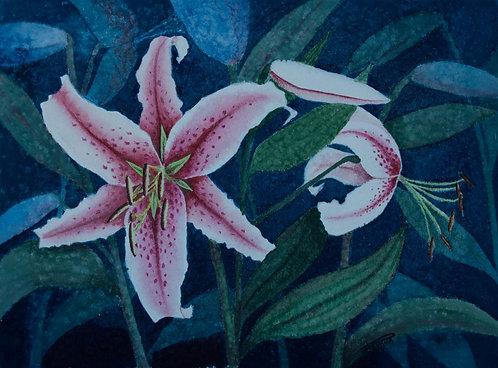 Fragrance - Gail Pahwa