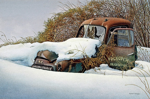 Relic in the Snow- Robert Hinves