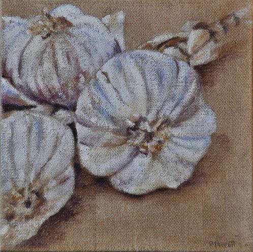 Garlic - Debbie Parrott