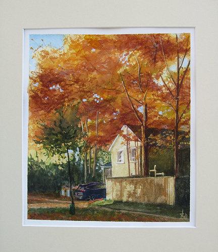 Autumn Morning, Guildwood - Judy White