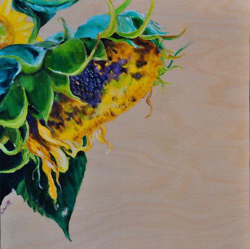 End of Season - Debbie Parrott
