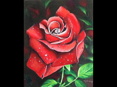 Red rose - Angela Wong