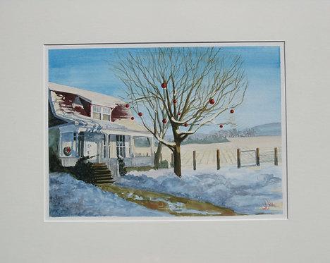 Christmas, Kingston Ontario - Judy White