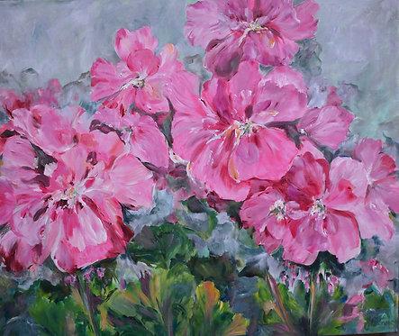 Geraniums - Joanne Binns