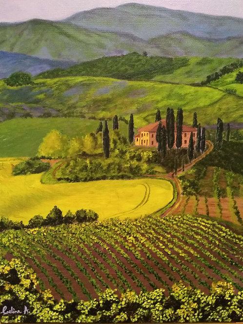 Tuscany Vineyards - Celine Almemo