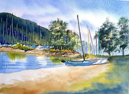 Ready to Sail - Carolyne Pascoe