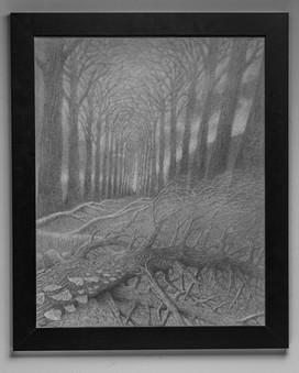 Willows of Montbrillant