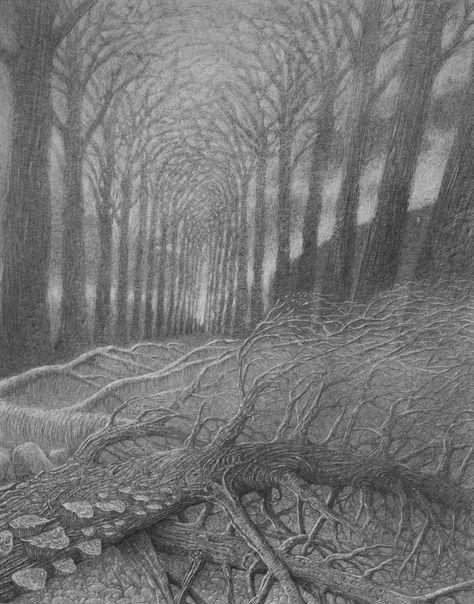 Willows - 40x50cm