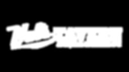 wt horizontal logo.png