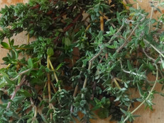 Time for Thyme