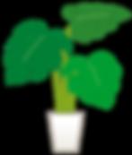 観葉植物.png
